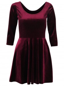 Velvet Sleeve Skater Dress