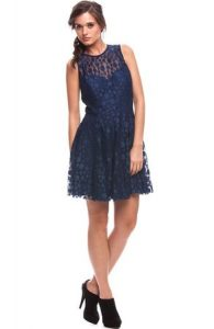 Lace Fit and Flare Dresses