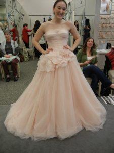 Blush Vera Wang Wedding Dress