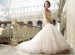 Lazaro Blush Wedding Dress