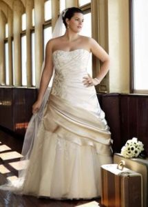 Plus Size Champagne Wedding Dresses