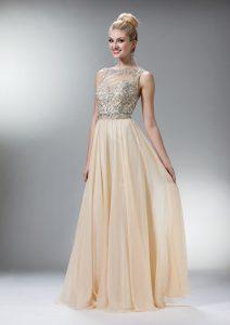 Champagne Dresses Prom