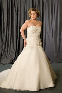 Plus Size Drop Waist Wedding Dress