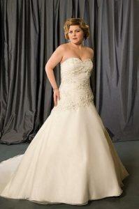 Plus Size Drop Waist Wedding Dress
