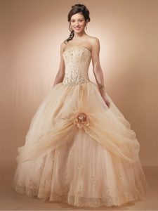 Champagne Ball Gowns