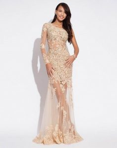 Sheer Lace Gown