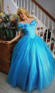 Adult Cinderella Gown