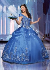 Cinderella Gowns Images